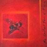 The constant fear of flying oil painting artist Kevin de Klerk