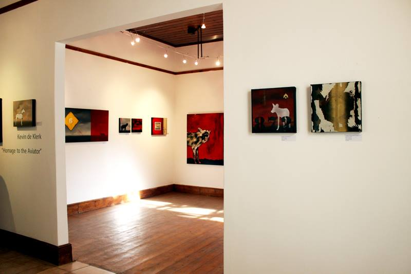 homage to the aviator exhibition Prince Albert Gallery