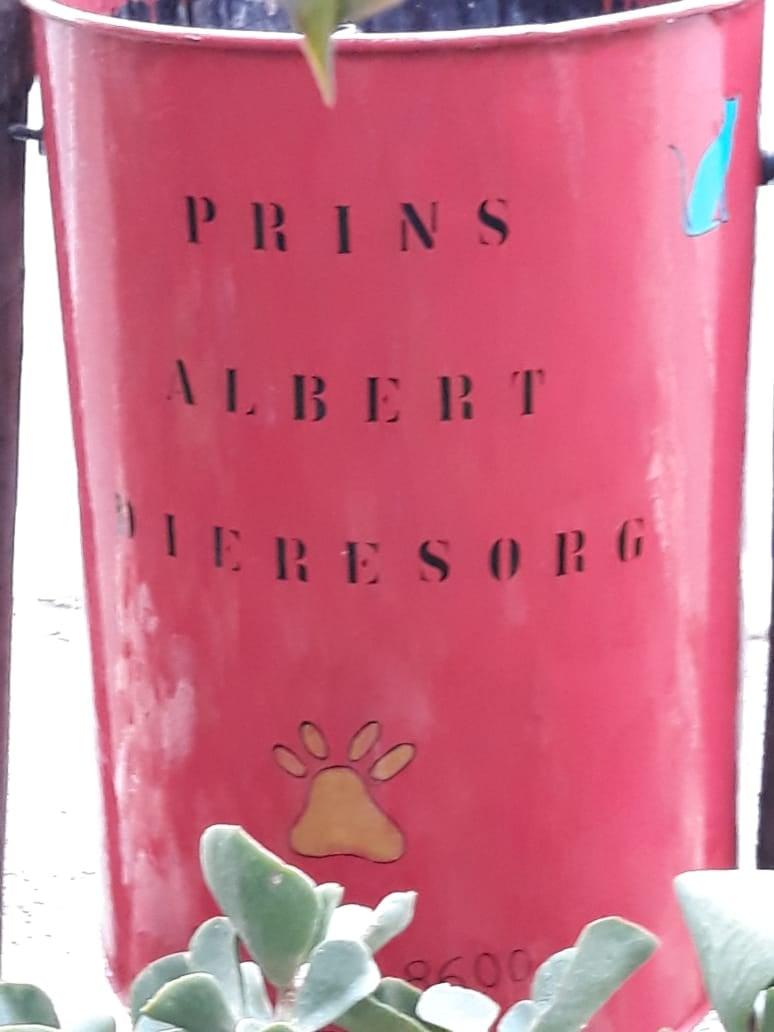 PAWS Prince Albert